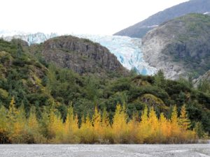 Enjoy These Things to do in Juneau This Fall