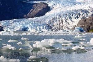 Visit Mendenhall Glacier in Juneau